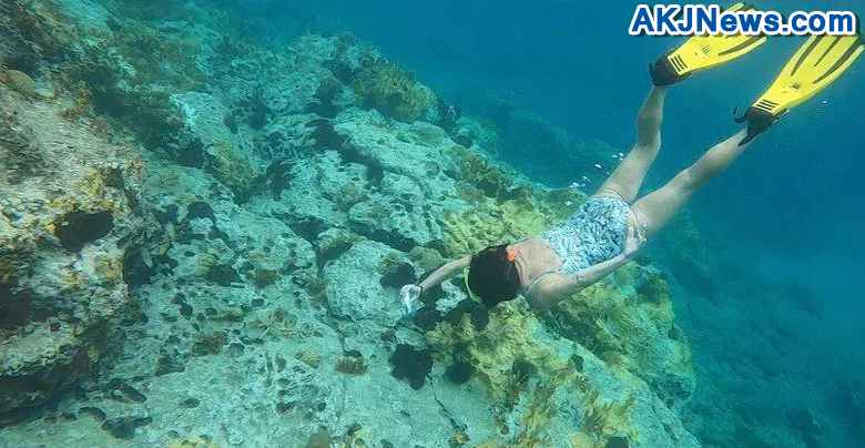 Diver Finds Lost Engagement Ring Of Indian Origin Couple