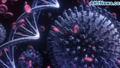 delta plus variant of corona virus
