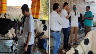Mahendra-Singh-Dhoni's-dairy-farm